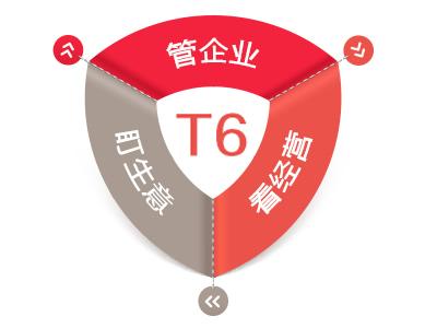 用友T6ERP